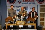 Småhund NM 2012