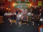 Høring: Drevprøver for småhund i januar og februar?