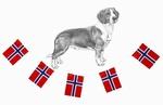 Deltakere Nordisk Mesterskap 2014